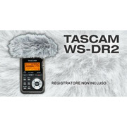 Tascam Dr Wind Screen
