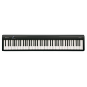 Roland Fp-10 Bk Digital Piano