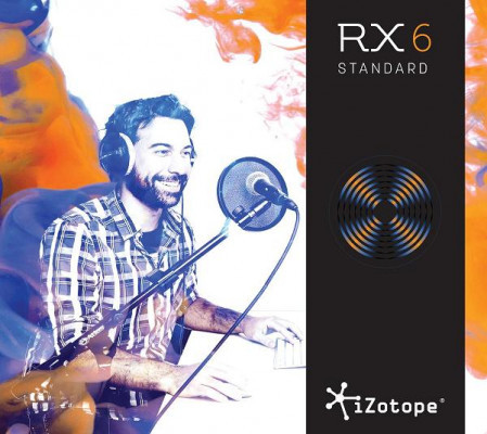 IZOTOPE RX6 STANDARD DOWNLOAD VERSION